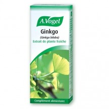 Gingko - extrait de plante fraîche 50ml